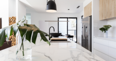 Which Stone is Best for Your Kitchen Countertop? Read to Know More